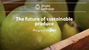 Ahold Delahaize PowerPoint slide