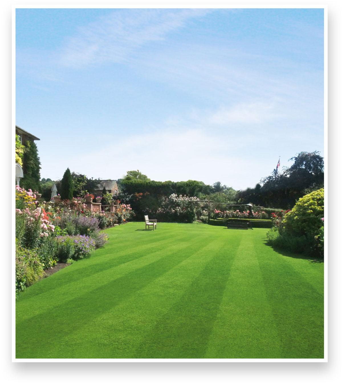 Bosch lawn mowers jubilee advert- before